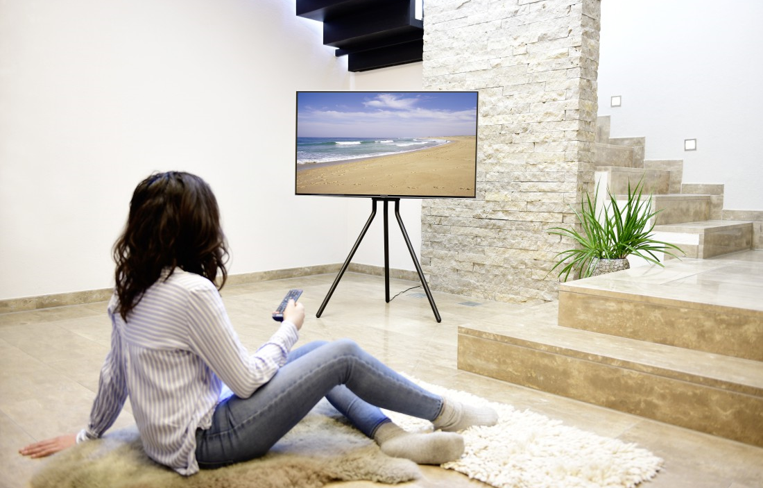 Hama tv-stand schildersezel