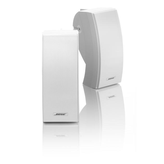 Bose 251 Environmental speaker - (including brackets) wit