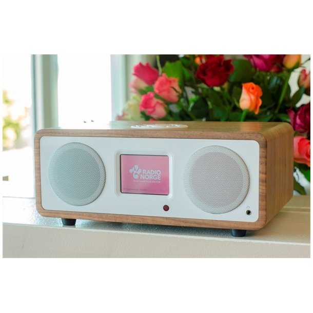 Tiny Audio STEREO DAB RADIO