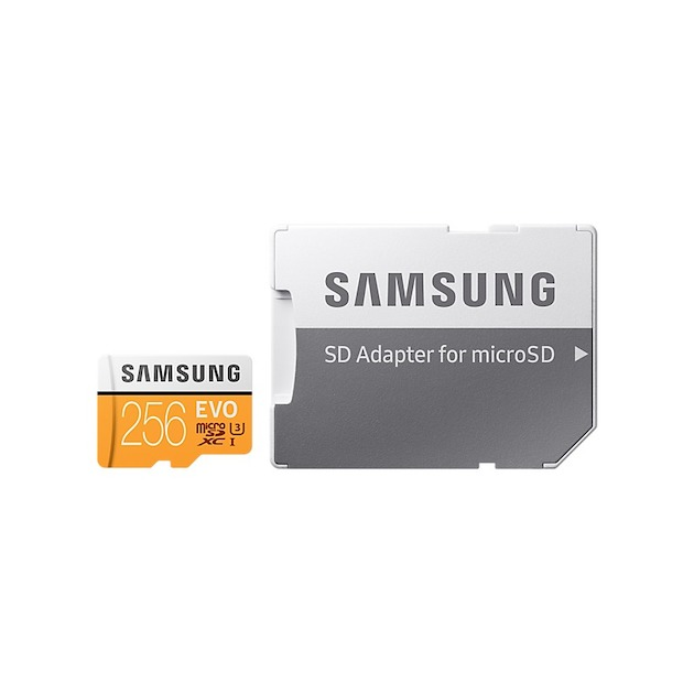 Samsung MicroSD Class 10 EVO 256GB