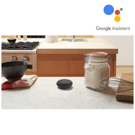 Google Home Mini antraciet