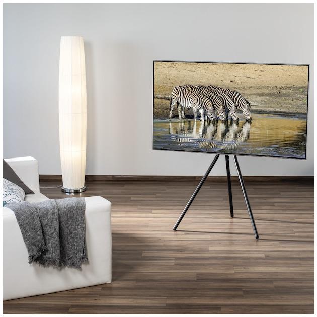 "Hama TV-stand ""schildersezel-design"""