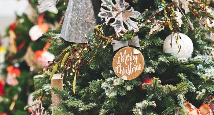 Kerst samen op afstand vieren | Expert